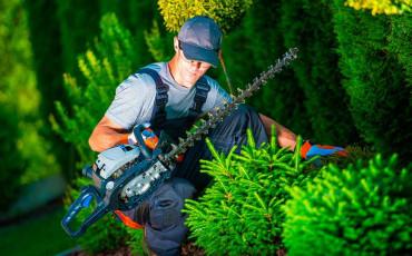 Maquinaria para tener un jardín perfecto